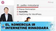 Turinio valdymo sistemos WordPress įskiepiai rinkodarininkams