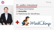 """VLADAS SAPRANAVIČIUS – """"Turinio valdymo sistemos WordPress įskiepiai rinkodarininkams"""""""